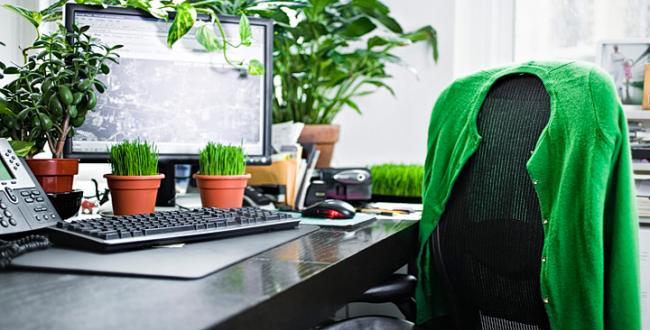Ecotips para el cuidado del medio ambiente en nuestra for Oficina de medio ambiente