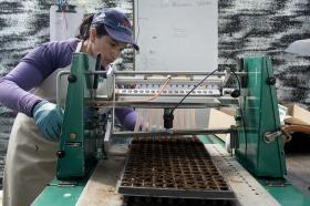 Proceso de plantulación en Semillero del Centro de Bio-Sistemas Alberto Lozano Simonelli.