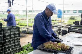 El semillero se encuentra adscrito a la Fundación para el Desarrollo Universitario y recibe cerca de 2500 visitantes al año.